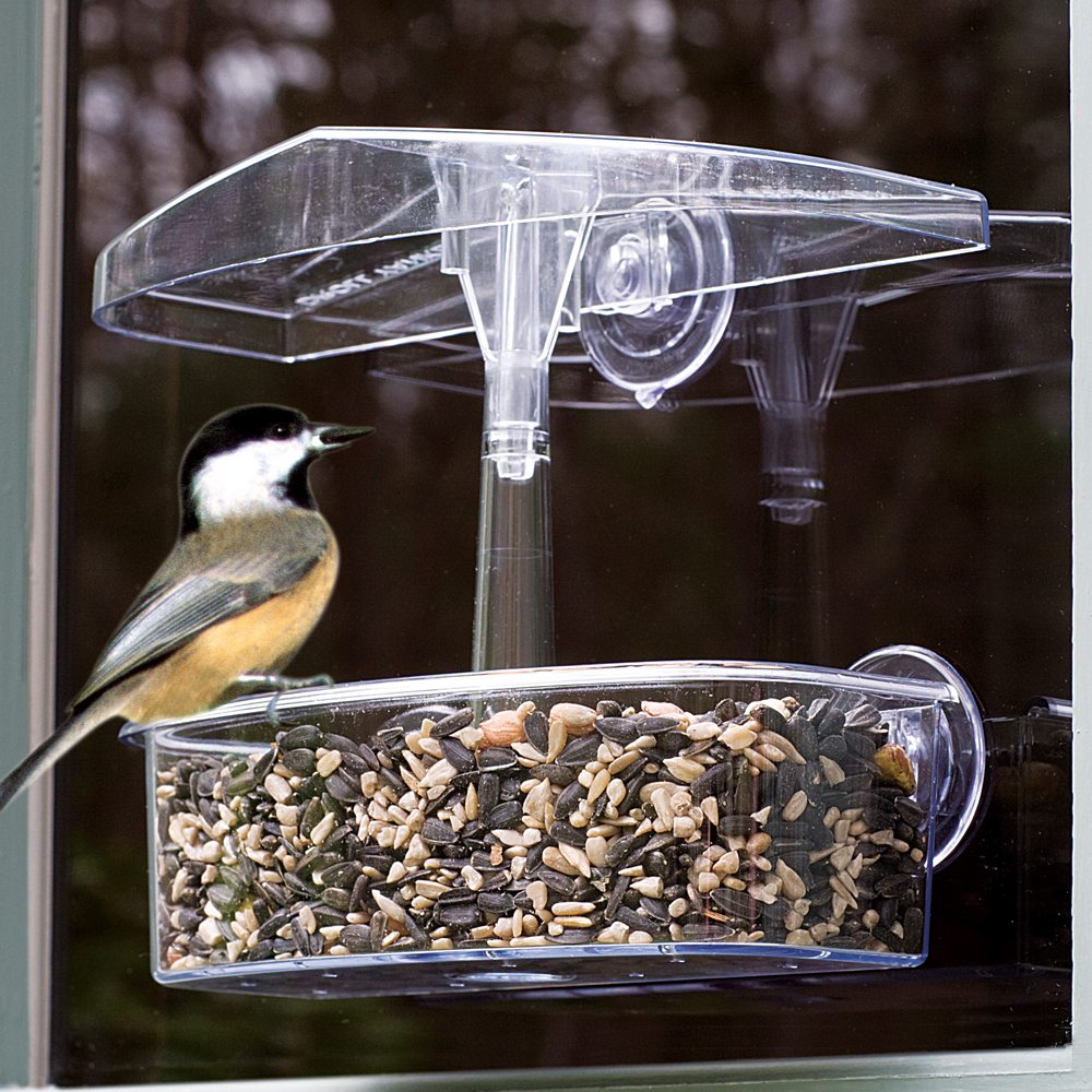7 Observer Window Feeder Moore Wild Birds